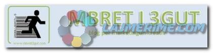 MBRET I 3GUT